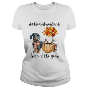 Dachshund pumpkin Its the most wonderful time of the year  Classic Ladies